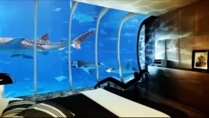 Asta da inovaţie! În Dubai se construieşte un hotel sub apă / FOTO&VIDEO de excepţie
