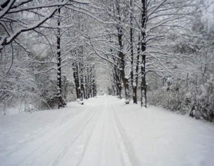 Ninge în România! Vezi în ce zone s-a aşternut zăpadă de câţiva centimetri