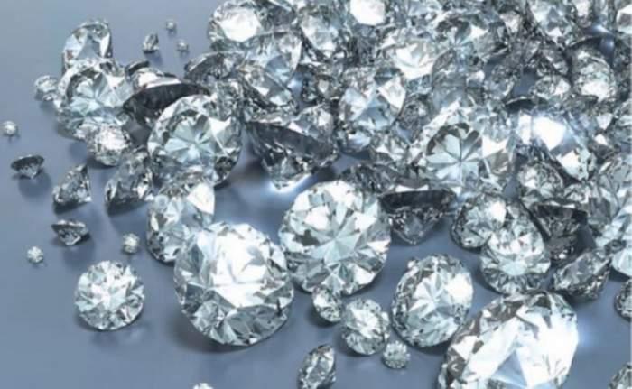 Şocant! O firmă din România face diamante din câini morţi!