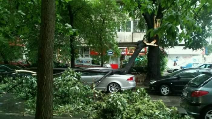 Furtună de proporţii în Bucureşti. Vezi bilanţul calamităţii