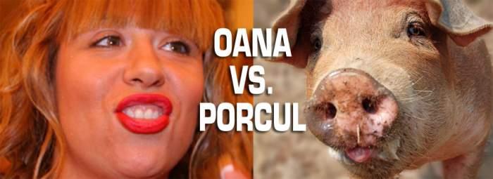 Război total! Oana Roman s-a alergat cu un porc pe plaja din Mamaia