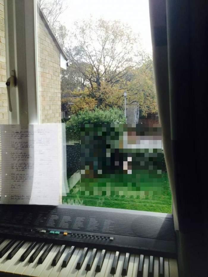 18+ Un student a rămas şocat când s-a uitat pe fereastră! Ce se întâmpla la el în grădină întrece orice fel de perversiune