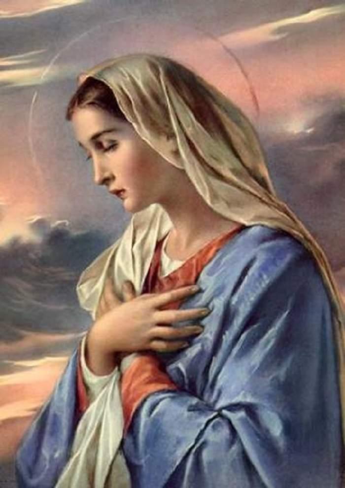 VIDEO / Semn divin? Chipul Fecioarei Maria a apărut acolo unde nu se aştepta nimeni