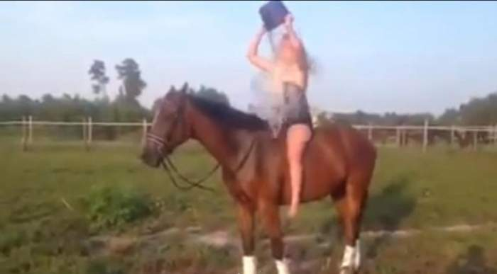 VIDEO FUNNY / Ce se întâmplă când faci Ice Bucket Challenge pe cal?