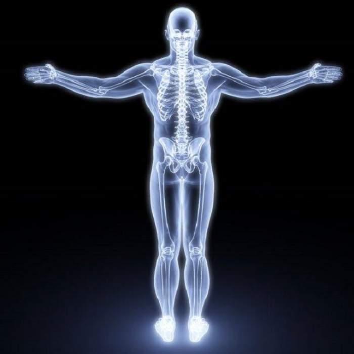 ÎNTREBAREA ZILEI - DUMINICĂ: Care este cel mai lung organ din corpul omenesc?