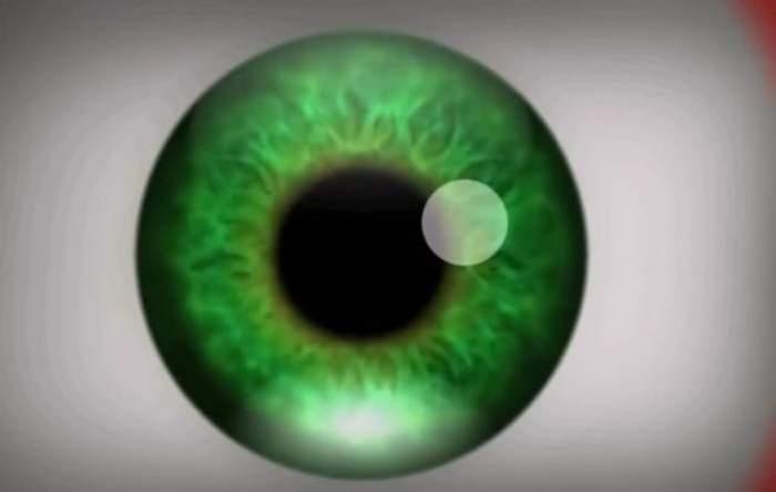 VIDEO / Asta-i cea mai tare iluzie optică! Poate provoca efecte halucinogene