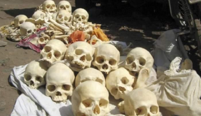Afaceri macabre, cu oase şi cranii umane!
