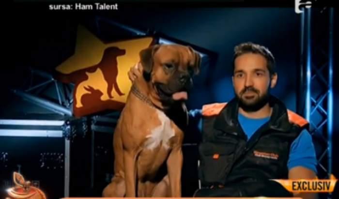 """VIDEO / Fosta iubită a lui Tuddy detonează bomba! Abia acum s-a aflat provenienţa câinelului cu care a participat la """"Ham Talent"""""""