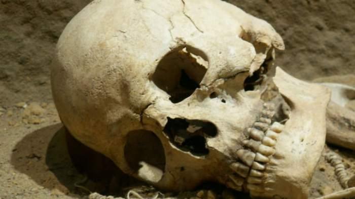 Descoperire sinistră într-un parc din Bucureşti! Rămăşiţele unui om! Primele investigaţii au scos la iveală detalii incredibile