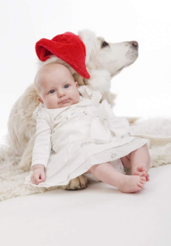 ÎNTREBAREA ZILEI - Luni: Pot să am animal de companie dacă am bebeluş?
