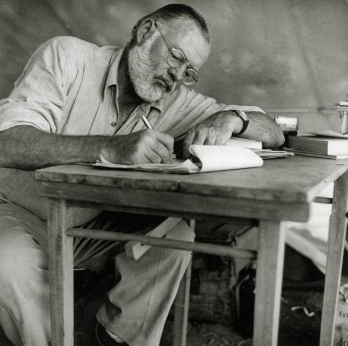 Fără urmă de pudoare! Strănepoata lui Ernest Hemingway, cu sânii la vedere pe internet