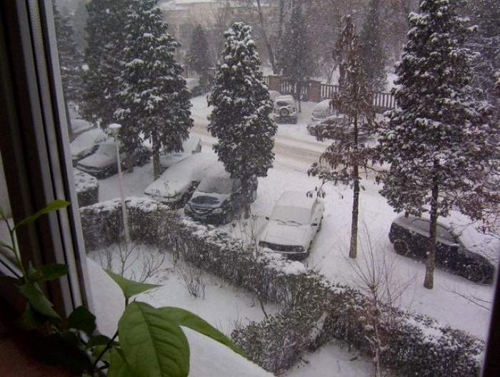 Prima ninsoare din România! Stratul de zăpadă are câţiva centimetri