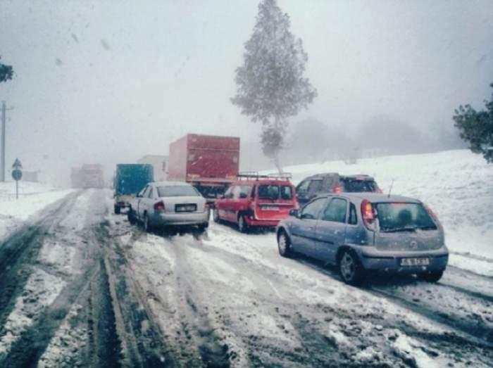 Ninsoarea a făcut ravagii în Bucureşti şi în ţară! Copaci şi stâlpi doborâţi de viscol, maşini blocate în zăpadă, pacienţi duşi la spital cu autoşenilate