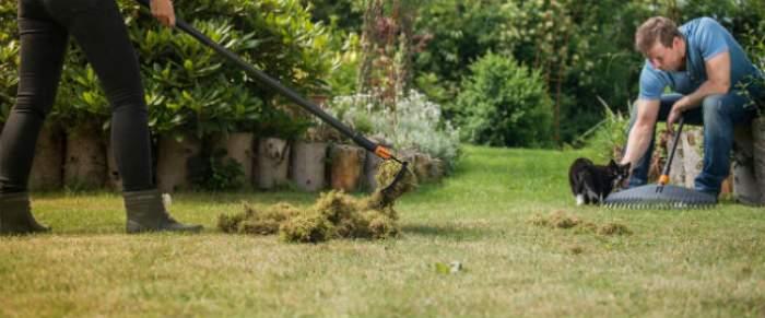 ÎNTREBAREA ZILEI – SÂMBĂTĂ: Care este adevărul despre mirosul ierbii proaspăt tăiată?