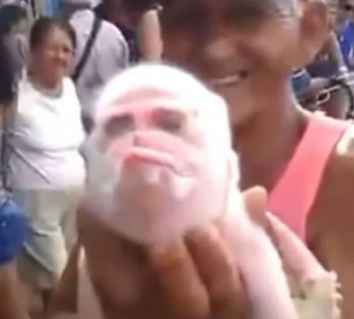 VIDEO / Cea mai ciudată creatură din lume! O combinaţie de porc cu maimuţă