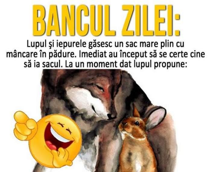 BANCUL ZILEI  - MARȚI: Lupul și iepurele găsesc un sac mare plin cu mâncare în pădure...