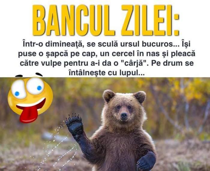 Bancul zilei: Într-o dimineaţă, se sculă ursul bucuros... Îşi puse o şapcă pe cap, un cercel în nas şi pleacă către...