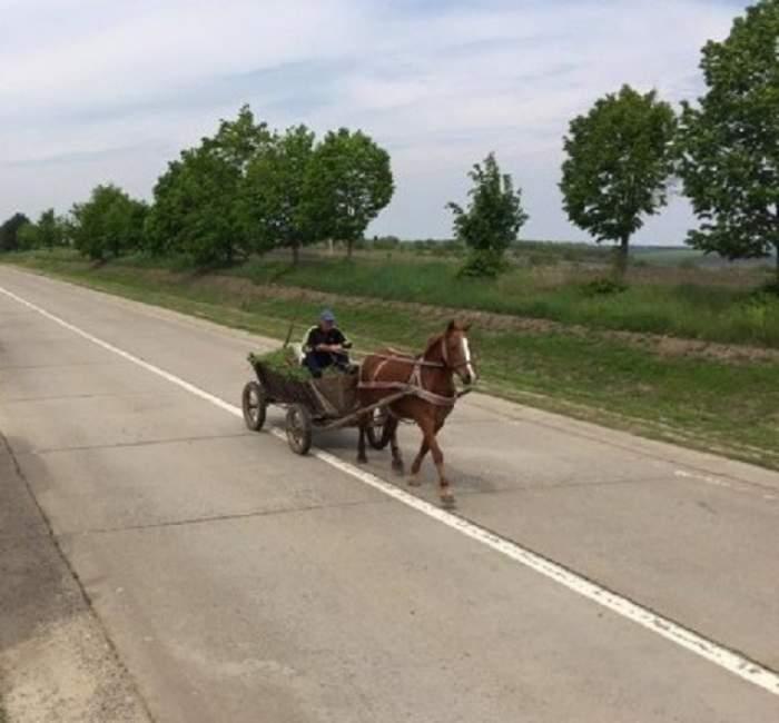 Au fotografiat o căruţă pe un drum din Moldova, dar ce se afla pe partea cealaltă a uimit pe toată lumea!