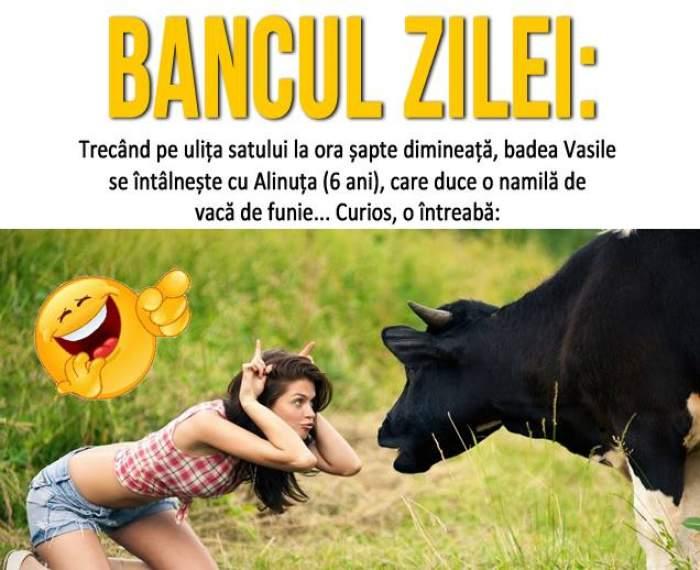 Bancul zilei: Trecând pe ulița satului la ora șapte dimineață, badea Vasile se întâlnește cu Alinuța...