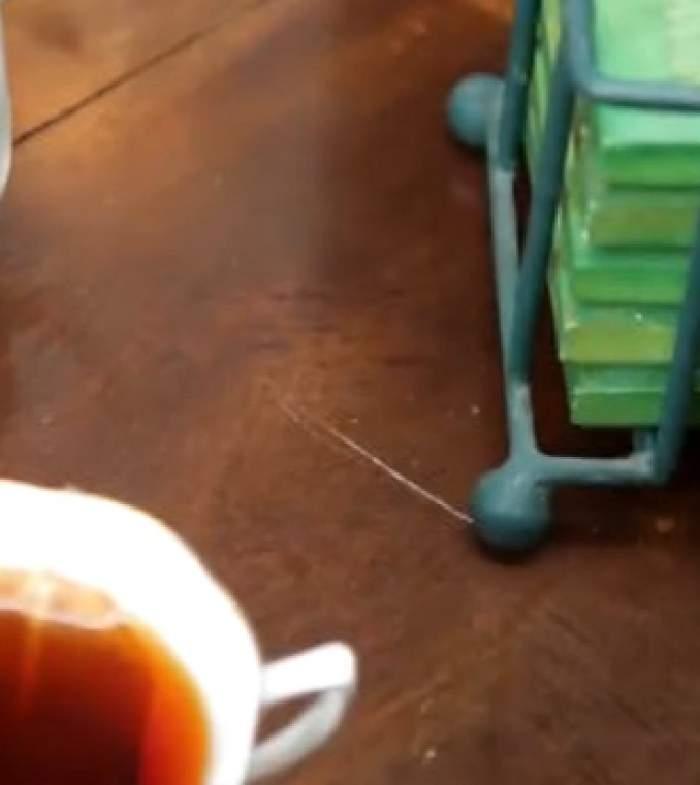 VIDEO / A scăpat zgârietura de pe mobila de lemn cu o simplă mişcare! Trucul care te va salva la vizita părinţilor tăi