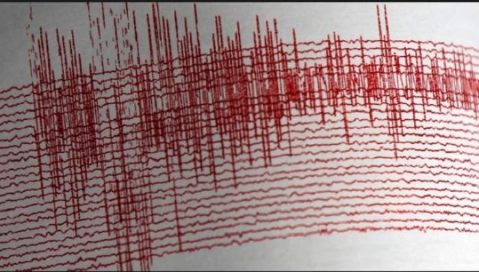 Cutremur de 2,6 grade pe Richter în Vrancea