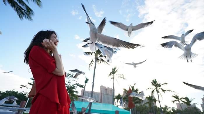 Anca Lungu a ajuns în Bahamas! Cu ce mari vedete internaţionale s-a întâlnit