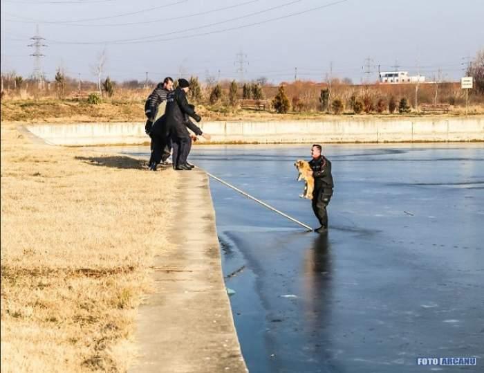 """Un câine a fost salvat din apele îngheţate ale lacului de la """"Riviera""""! Imaginile care l-au emoţionat şi pe pompierul erou"""