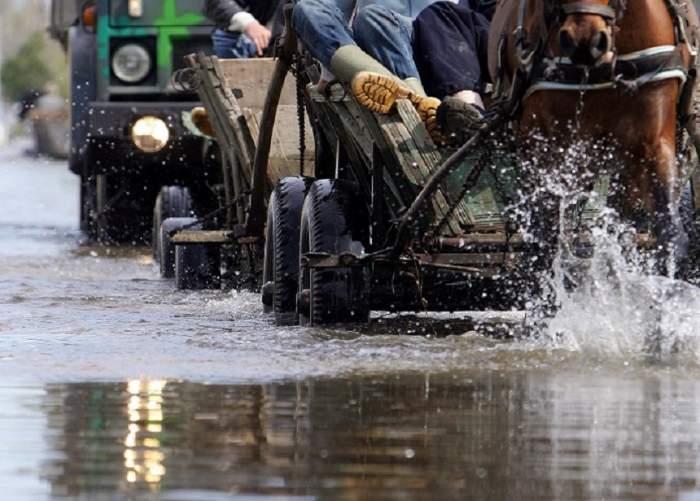 Vremea a făcut ravagii mari în România! Străzi acoperite de apă şi copaci puşi la pământ, în Capitală şi alte 12 localităţi