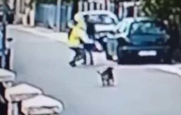 VIDEO / Un câine maidanez a devenit erou, după ce a scăpat o femeie de un hoţ!