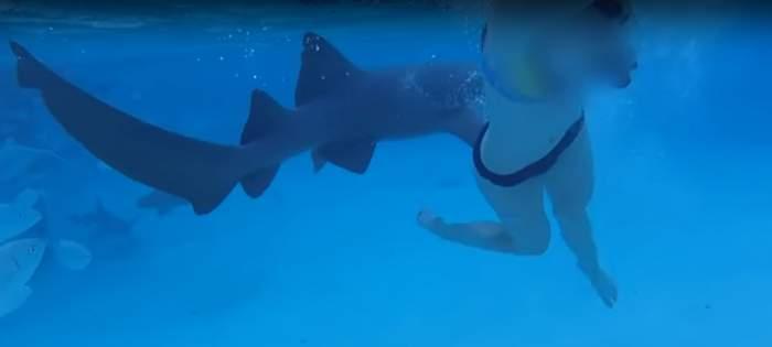 VIDEO / Imaginile care îți vor da coșmaruri. Tânără superbă, atacată de un rechin uriaș