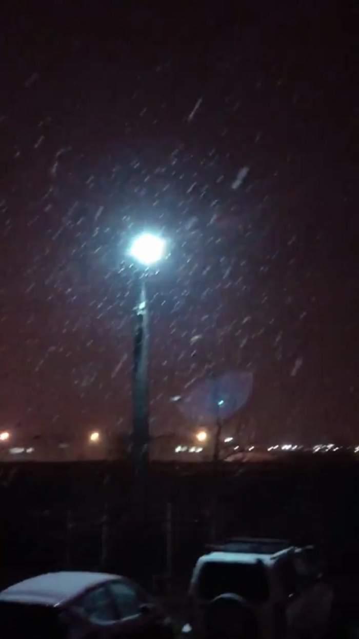 Ninge ca în poveşti în capitală!