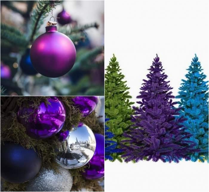 Renunță la culorile clasice! Bradul violet este senzația acestei ierni