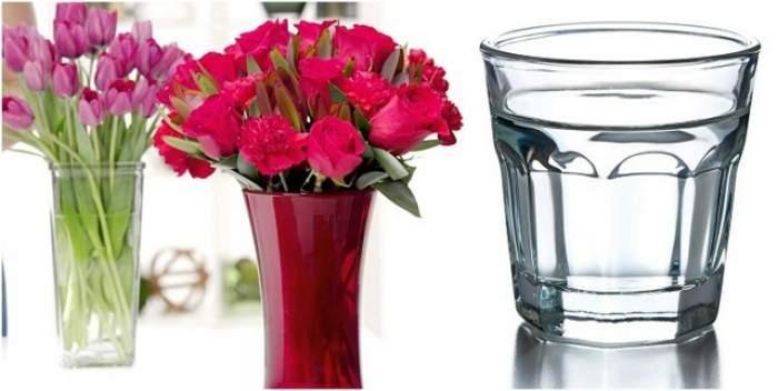 A primit flori de la iubit și le-a pus într-o vază cu vodcă. Ce s-a întâmplat la câteva săptămâni după a rămas istorie