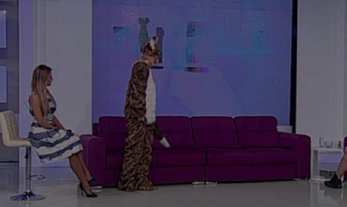 """VIDEO / O vulpe şi-a făcut apariţia în platoul de la """"Răi da` buni""""! Merge în două picioare şi vorbeşte. Cine se ascunde în spatele măştii"""