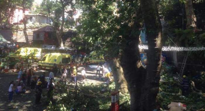 FOTO / Tragedie în timpul unui eveniment religios! 11 persoane au murit după ce un copac s-a prăbuşit peste ele