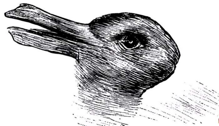 Iluzia asta optică spune multe despre tine. Puţini îşi dau seama ce apare, cu adevărat, în imagine