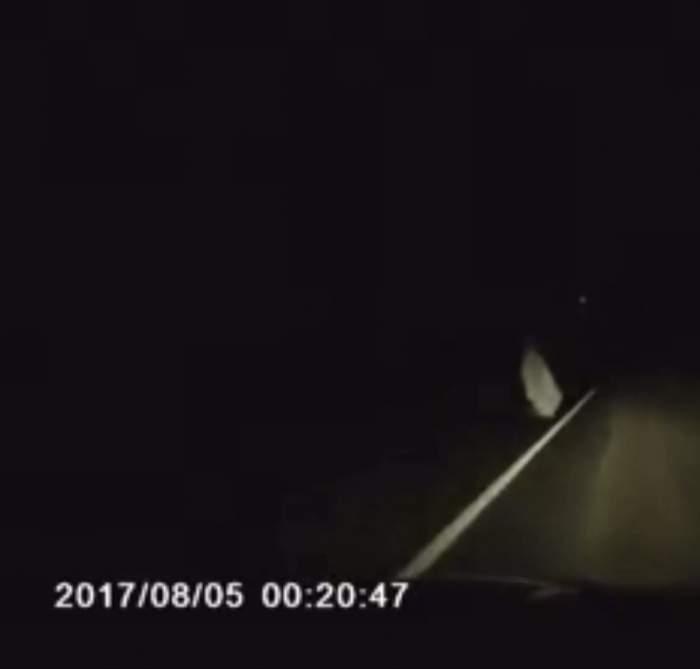 VIDEO / Apariţie halucinantă în Buzău! Un bărbat a trăit senzaţii ciudate pe propria piele