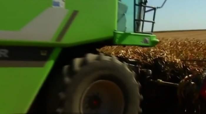VIDEO / Descoperire macabră într-un lan de porumb! Şoferul unei combine a găsit un cadavru! Ce cred anchetatorii despre identitatea bărbatului
