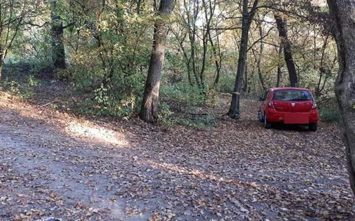 FOTO / Sex nebun, în zorii zilei, în pădure! Un bărbat şi o femeie din Mureş au fost prinşi în fapt!