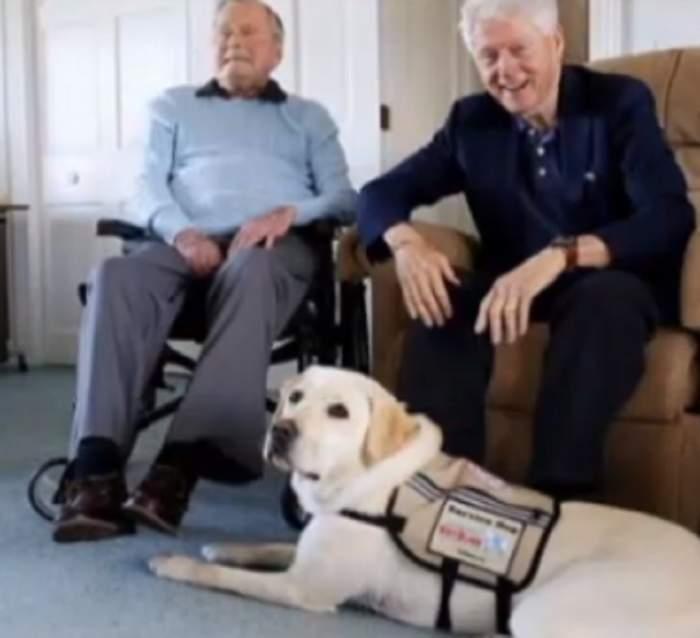 FOTO / Te vor trece fiorii! Ce a făcut patrupedul lui George Bush Senior lângă sicriul fostului președinte american