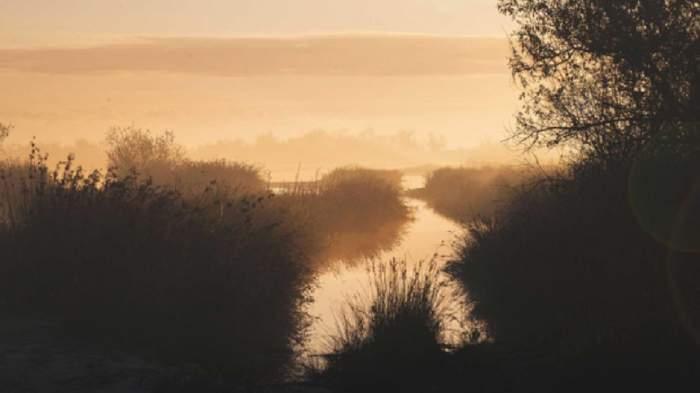 Activități și excursii in Delta Dunării pe care să le faci iarna