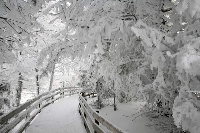 Cod roșu de ninsoare și viscol în România