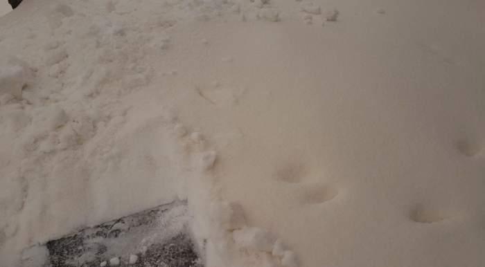 FOTO / Zăpadă portocalie în Galaţi! Ce se ascunde în spatele culorii