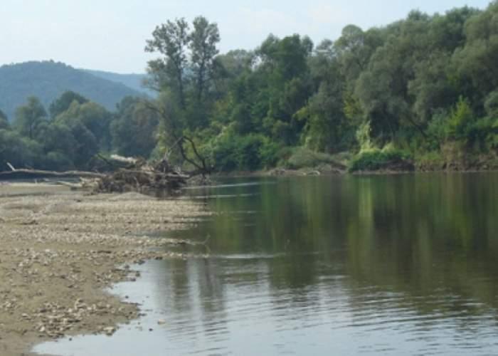 VIDEO / Terifiant! Ce au descoperit poliţiştii în râul Mureş. Era acolo de câteva zile