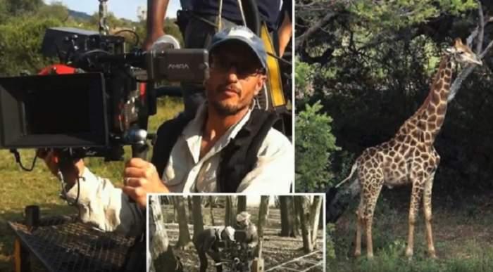FOTO / Destin crunt! Un regizor a murit după ce a fost lovit de o girafă, în timpul filmărilor