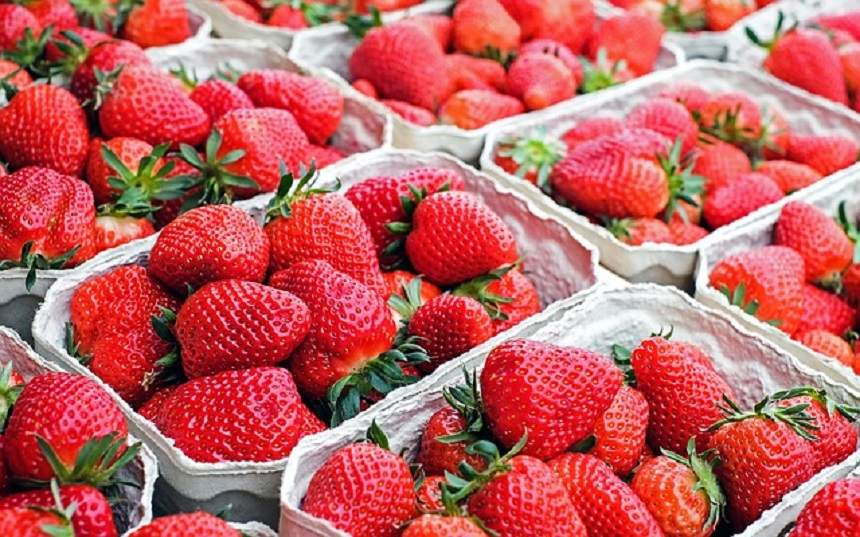 căpșuni dating site brevard county florida dating