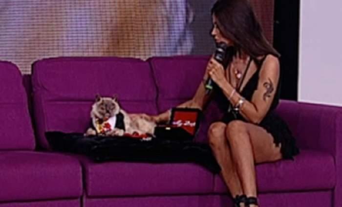 """VIDEO / Oana Zăvoranu și-a adus motanul împăiat la TV: """"Am limba, craniul, conservate în formol"""""""