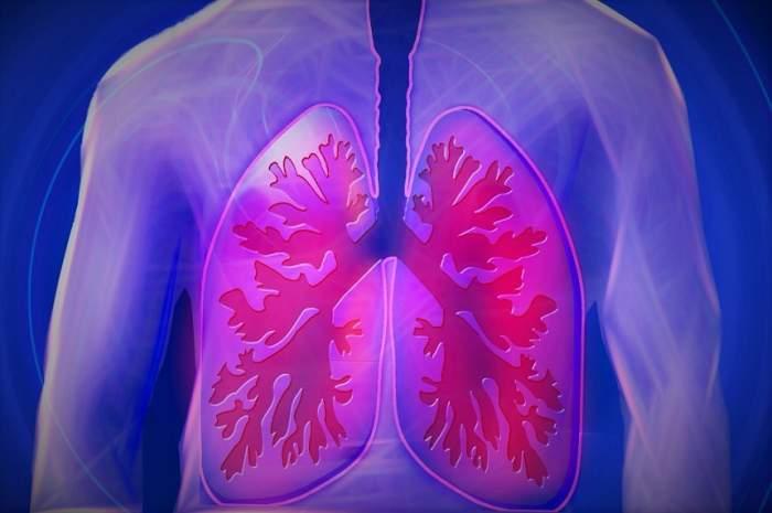 Cum să-ți cureți plămânii în doar 3 zile. Plantele care te ajută la detoxifiere