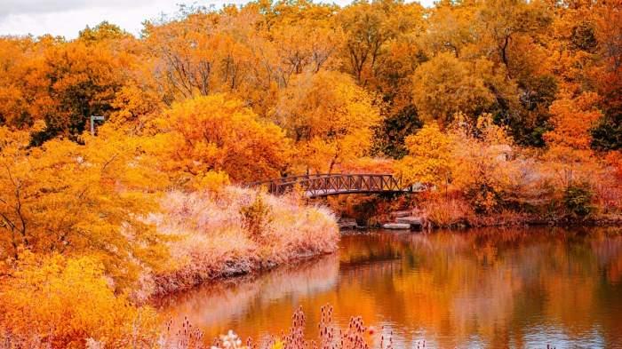 Octombrie ca august! Temperaturi neobișnuit de mari în următoarea perioadă