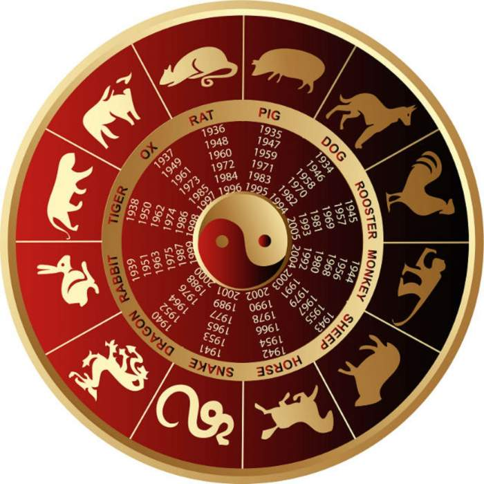 Zodiac chinezesc, joi, 14 noiembrie. Câinele întâmpină mari probleme în dragoste